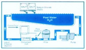 How Salt Chlorine Generators Work Hayward Poolside Blog