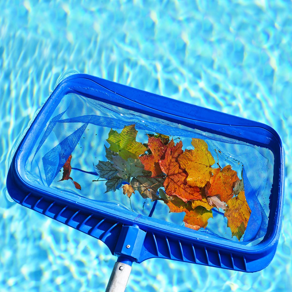 How To Maintain Your Pool In Season Hayward Poolside Blog