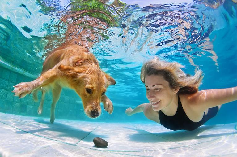 salt water pool versus chlorine